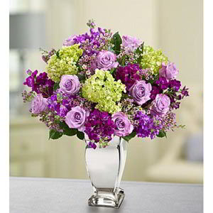 Parsippany Florist | Lavender Collection